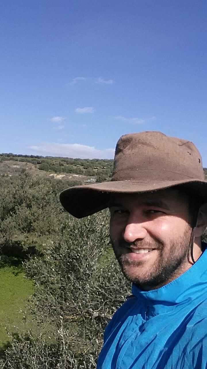 Die Ernte in Kreta